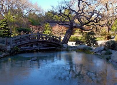 Nou: 60 de minute de Spa şi un prânz delicios, în Japonia