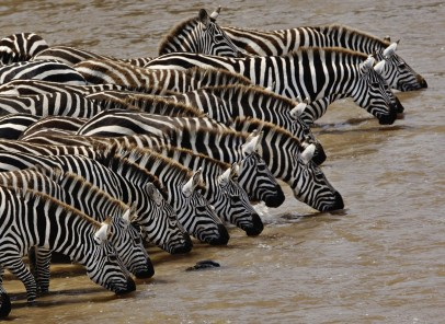 Vacanţă pe continentul african, pe urmele lui Stanley şi Livingstone (1. Kenya)