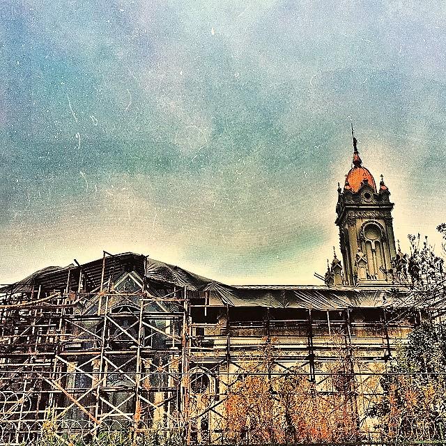 biserica in schela