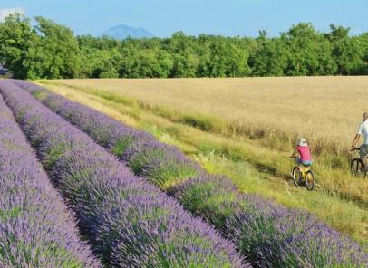 Parfum de Guillotine şi alte istorii de vacanţă provensală